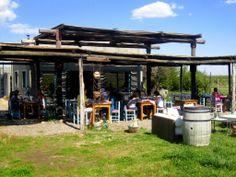 Wineries in Mendoza: Bodega La Azul. I Uncorking Argentina Custom-Built Wine Tours in Mendoza Wine Country