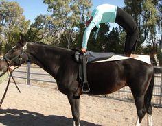 horseback yoga - Google Search