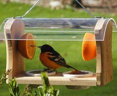 Make Your Garden Attractive with Decorative Bird Feeders Fruit House