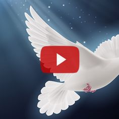 Dove Images, Religious Pictures, Free To Use Images, Beautiful Nature Wallpaper, Islamic Videos, Beautiful Words, Diy Room Decor, Diy And Crafts, Animation
