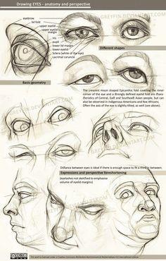 #anatomy #drawing #nude #artist #eye#artlover #anatomyface #art #pncil #anatomyey #anatomyartist