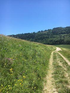 Blog über das Reisen und wandern. Zurzeit vorallem Wandern in der Schweiz. Fernziel ist der Fernwanderweg E1 Summertime, Country Roads, Blog, Switzerland, Hiking, Viajes