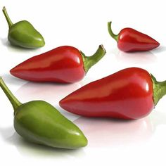 Chili Pepper Compound Curtails Breast Cancer | Doctor Bob