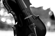 Digital Download Black Violin  Fine Art by AnaPontesPhotography