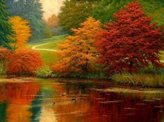 The Beautiful colors of autumn in Germany