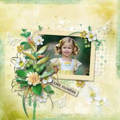 JIRSEV scrap: Flowers For My Love by CarolW Designs Scrap, Deviantart, My Love, Frame, Flowers, Blog, Design, Decor, Picture Frame