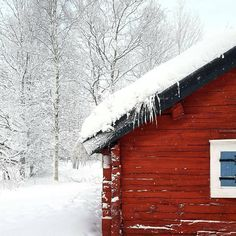 "oldfarmhouse: ""・・""Contrast, last winter."" http://instagram.com/life.by.linus """