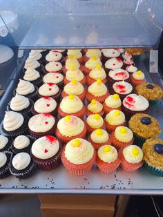 Plenty of cupcakes here this Sunday morning. (L to R) Sea Salt Caramel, Red Velvet, Pink Lemonade, Red Velvet and Blueberry Cheesecake. We also have Peppermint Patty, French Toast & Maple Bacon and Funfetti. #jamesandthegiantcupcake #jatgc #cupcakes #cupcakery #cupcakestagram #redvelvet #eastbay #bayarea #oakland #pinklemonade #yummy