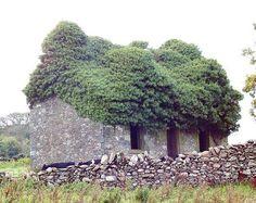 Abandoned houe. Monreith, Scotland. Photo By Paul Stevenson