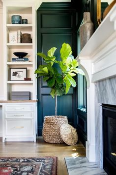 60 ideas for plants indoor living room fiddle leaf fig Office Deco, Best Indoor Plants, Fig Plant Indoor, Indoor Plant Decor, Indoor Planters, Indoor Gardening, Home And Deco, My New Room, Home And Living