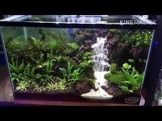 Waterfall aquascape tank 35*35*60(airterjunpasir) - YouTube