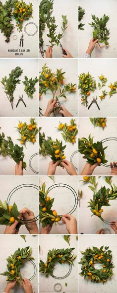Kumquat and Bay Leaf Wreath
