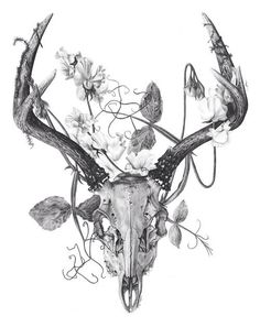 Antlers & Floral | We Heart It