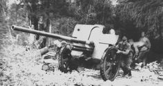 76-мм дивизионная пушка Ф-22 старшего сержанта Турсунходжиева перед боями. Орловское направление. Лето 1943 г.