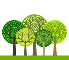 The group of green trees illustration photo
