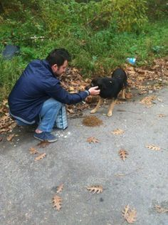 Romania-Mihai Grigorie/M.G Rescue.Mihai has saved about 10 dogs resently from public shelter and there is now a LOT of vet bills.But if he wouldnt have taken these dogs they woud be dead now :( CAN YOU HELP? Every a little donation helps! Donate,Share,visit his FB page! Donations paypal account grigoriemihai@yahoo.com Thank you! <3 SHARING COULD HELP THE DOGS! THANK YOU SO MUCH!!!