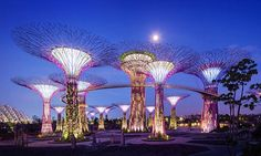 38% OFF Gardens by the Bay + Singapore River Cruise  >>> http://www.coupark.com/singapore-deal/94509/gardens-by-the-bay.html
