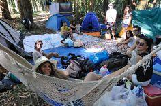 Tendas já montadas para os próximos dias :)  #tendas #campismo #parquedecampismo #voluntarios #vemservoluntario #festival #vilardemouros