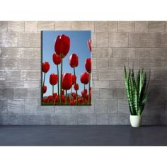 tableau-decoration-fleur-tulipe-rouge