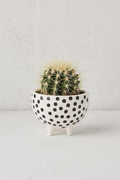 Florero Decorativo Homeware Iridiscente Cactus-Cactus Jarrón-Cactus Ideas de Regalos
