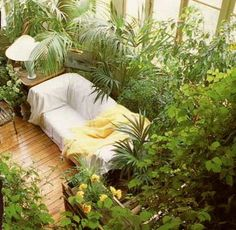 If my living room looked like this, I would be the happiest girl around. No such thing as too many plants!