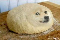 dough doge Meme Generator - Imgflip