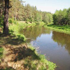 Приятно ощущать радости жизни, вдыхать свежий воздух свободы! #туризм#travel#belarus#russia#природа#беларусь#россия#путешествия