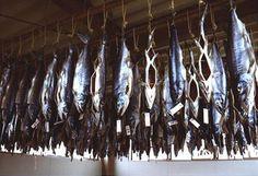 干した塩引鮭