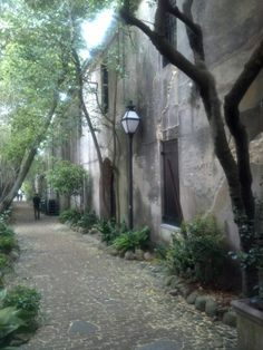 Philadelphia Alley in Charleston, S.C. One of the unknown gems of the city. You have to know where it is to see it. Best part was being on a walk with my Dad, together.
