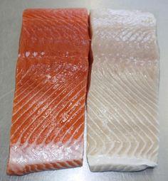 Trivia Tuesday: what causes a salmon fillet to be white? #trivia #alaska #prizes