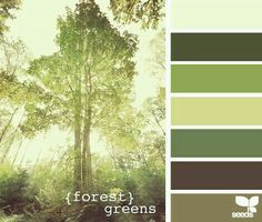 Green / Brown