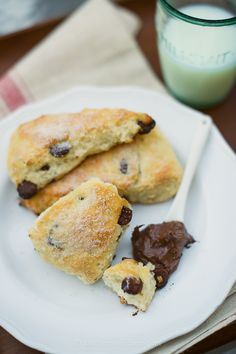 Chocolate Chip Scones | Kitchen Confidante