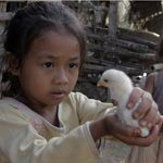 Donate animals to poor countries | Heifer International charity gifts | Heifer.org