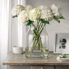 white hydrangeas clear glass vase simple stunning arrangement