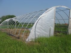 weather torn hoophouse