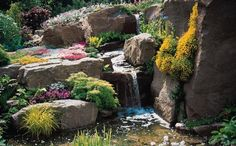 Rock Garden Landscape (Rock Garden Landscape) design ideas and photos