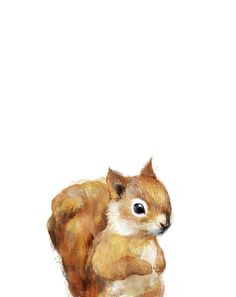 Little Squirrel Art Print by Amy Hamilton.  All prints are professionally printed, packaged, and shipped within 3 - 4 business days. Choose from multiple sizes and hundreds of frame and mat options.