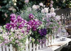 ▷ Balkonkästen - Ideen für alle Jahreszeiten zum Nachpflanzen | LIVING AT HOME