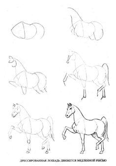 Atları Cizmek ögrenin. Rus HİZMETİ Çevrimiçi Diaries - Kayd Üzerine tartışma