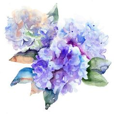 hydrangea tattoo - Google Search