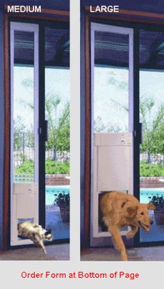 Decorating sliding glass cat door : What an awesome idea! Temporary doggie door for patios with glass ...