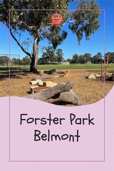 The City of Belmont has a very cool new edition a Forster Park – a bike pump track! There's the regular pump track circuit and then there are some pretty large jumps. #perth #perthkids #perthplaygrounds Nest Swing, Bike Pump, Play Spaces, Sports Games, Perth, Four Square, Playground, Circuit, Golf Courses