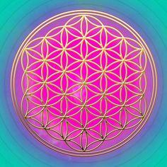 Sensaciones: El Arte de Permitir - Eshter y Jerry Hicks - Lo nuevo se construye cuando abrimos mente y corazón al poder del Alma y, conscientemente, permitimos que la energía creativa se exprese a través de nosotros. De esa forma, aprendemos que el poder creativo del Universo está dentro de nuestro ser y que podemos, con pensamientos, sentimientos y acciones positivas, crear nuestra propia realidad.    AFIRMACIÓN: El poder creativo del Universo está fluyendo a través de mí, ahora.
