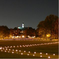 University of Illinois main quad    Google Image Result for http://www.igsauiuc.com/images/diw.jpg