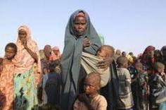F.G. Saraiva: 800 mil refugiados na África sofrem com falta de a...