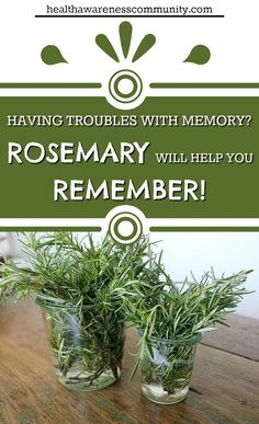 Having problems with concentration and remembrance? Rosemary can help!