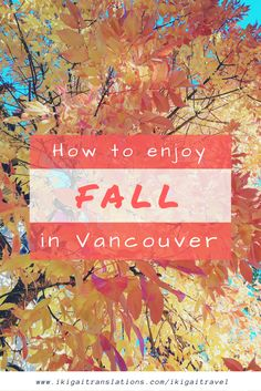 A guide to fall in Vancouver: from Alice in Wonderland to pumpkin patches
