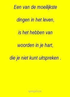popular dutch words