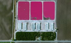 12/29/2014 Poultry Farm Manteca, California, USA 37.838806704°, -121.146400677°  A poultry farm in Manteca, California, USA. Globally, more than 50 billion chickens are raised per year as a source of food.
