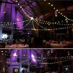 Globe lights over the dance floor for a wedding at Riverway Clubhouse last night. Globe Lights, Cool Designs, Reception, Events, Dance, Weddings, Instagram Posts, Studios, Floor